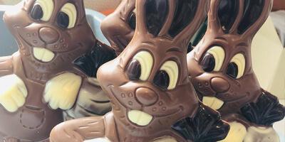 Ambachtelijke pralines | chocolade